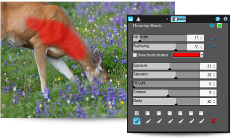 Acdsee non-destructive brush on edits is one of its best tools