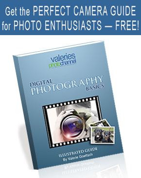 sign up for our free photography book