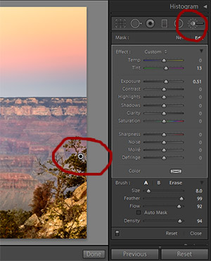 You can use the local adjustment brush to dodge or burn, adjust tone or apply local sharpening and more